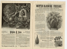 Load image into Gallery viewer, 1900 Antique A GUIDE TO ROSE CULTURE Seed Catalog, West Grove,Pa., Flowers, Garden
