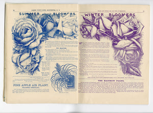 1894 VICK'S FLORAL GUIDE Seed Catalog, Rochester, New York, Garden, Flowers