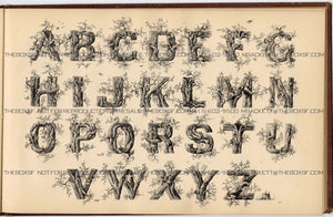 1879 Antique AMES' ALPHABETS Full Book PDF ONLY, Typography, Lettering, Design