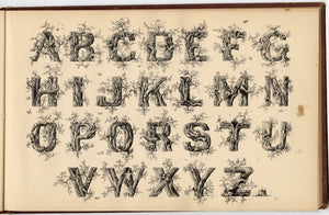 1879 Antique AMES' ALPHABETS Full Original Book, Typography, Lettering, Design