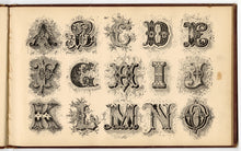 Load image into Gallery viewer, 1879 Antique AMES' ALPHABETS Full Original Book, Typography, Lettering, Design