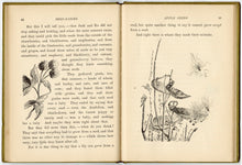 Load image into Gallery viewer, 1896 Seed Babies Illustrated Children's Book, Margaret W. Morley, Gardening, Plants