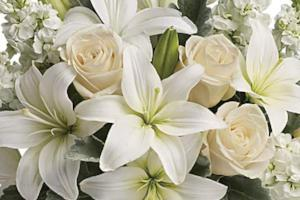 All white floral bouquet ideal for delivery of sympathy flowers in Winnipeg.