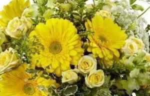 Bright yellow gerbera and roses perfect for Get Well Flowers Delivered in Winnipeg.