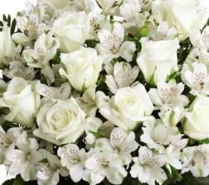 All White flowers suitable for Funeral flowers in Winnipeg.