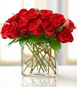 Red roses arranged in vase available for same day flower delivery in Winnipeg.