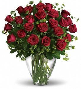 My Perfect Love - 2 Dozen Long Stemmed Red Roses