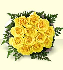Yellow Roses available for same day delivery in Winnipeg