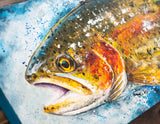 Beavers Bend Rainbow Trout