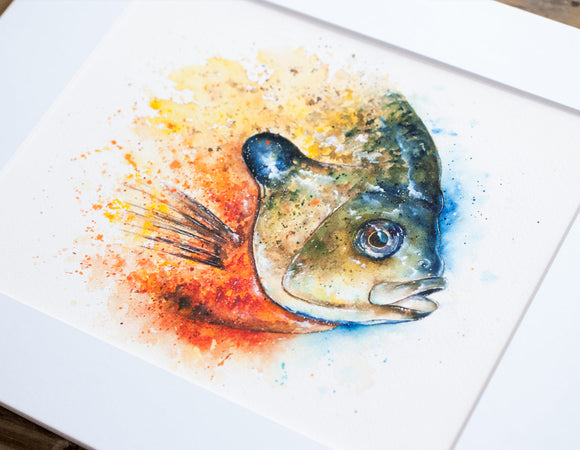 Bluegill Profile Watercolor