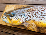 Holdover Brown Trout