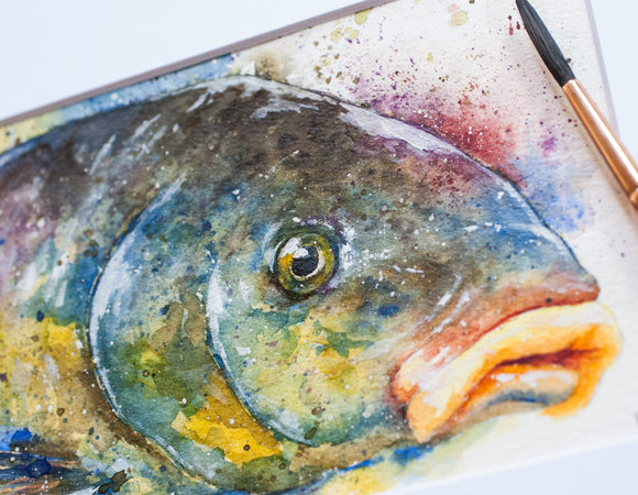 Common Carp Watercolor