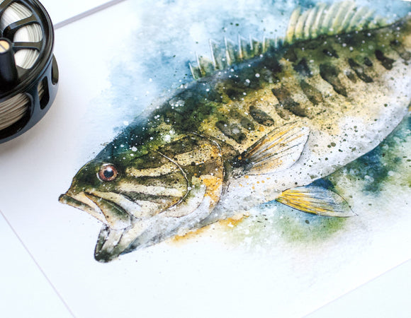 Guadalupe Bass Watercolor