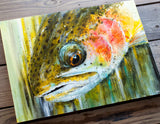 Rainbow Trout Close Up