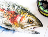 Rainbow Trout Profile Watercolor