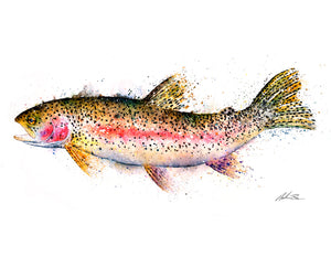 Abstract Rainbow Trout