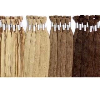 Raw cut hair Ambre 1 and 24 Color GVA hair - GVA hair