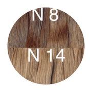 Wefts ombre 8 and 14 Color GVA hair_Retail price - GVA hair