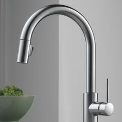 Trinsic Kitchen Faucet