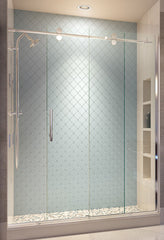 Vinesse Shower Door