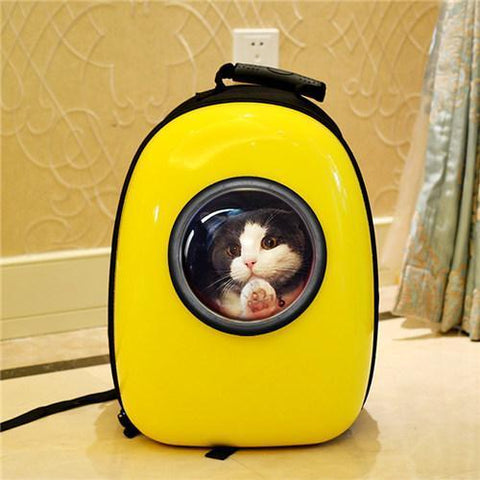 Outdoor colorful Travel Air Space bubble Backpack airline approved  Pet Carrier Bag