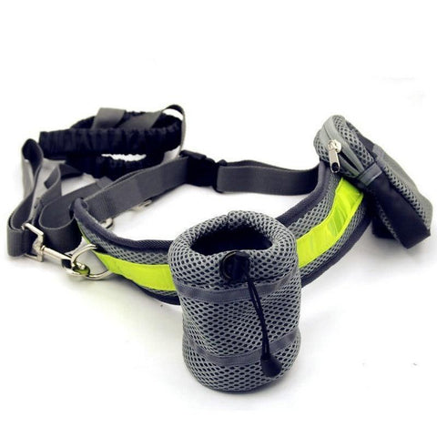 Collars and Leashes Hands Free Bungee Dog Leash Gray