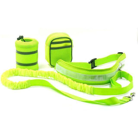 Image of Collars and Leashes Hands Free Bungee Dog Leash Light Green