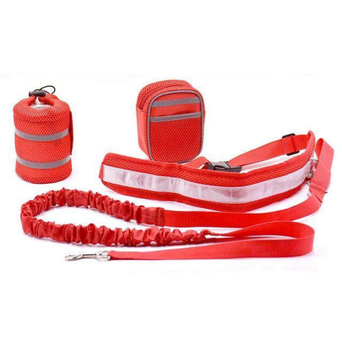 Collars and Leashes Hands Free Bungee Dog Leash Red