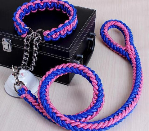 Image of Collars and Leashes High Quality Upgraded Leash for Large Dogs Blue Pink / S   25 to 30 cm