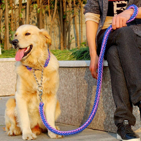 Image of Collars and Leashes High Quality Upgraded Leash for Large Dogs Purple Red / S   25 to 30 cm