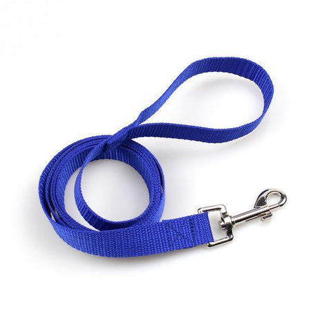 Image of Collars and Leashes Pet dog Nylon Walking Training Leash Blue / 1.5m