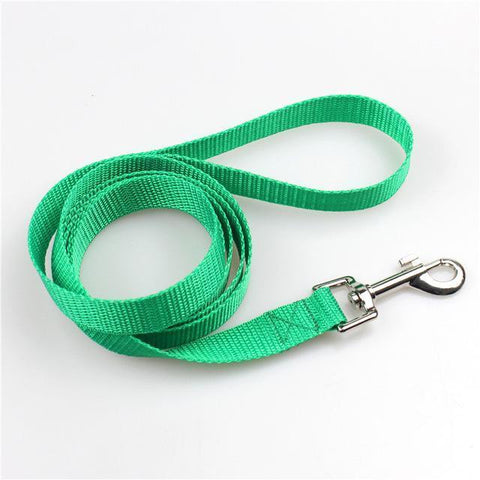 Image of Collars and Leashes Pet dog Nylon Walking Training Leash Green / 1.5m