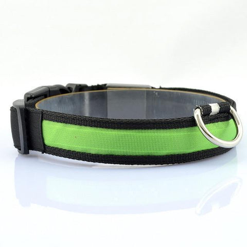 Collars and Leashes Safety LED Collar green / S