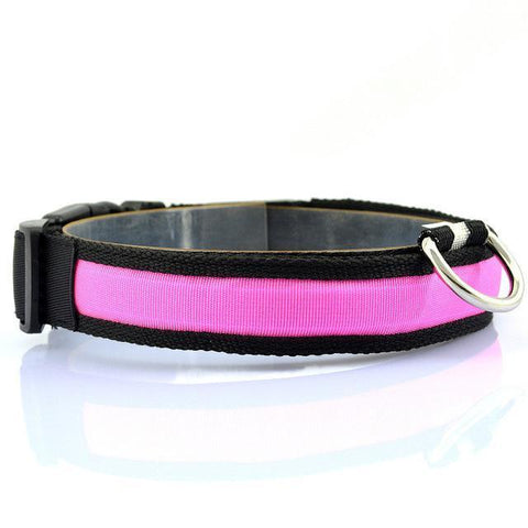 Collars and Leashes Safety LED Collar Pink / S
