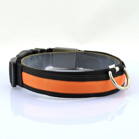 Image of Collars and Leashes Safety LED Collar purpleorange / S