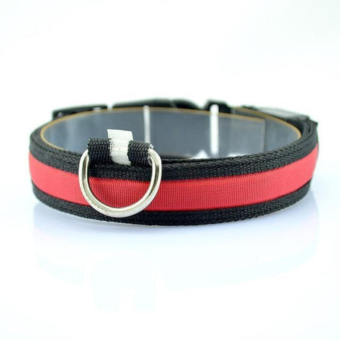 Collars and Leashes Safety LED Collar Red / S