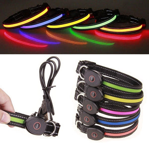 Collars and Leashes Safety LED Collar-USB LED Light waterproof Flashing Glow Pet Collar Blue / S