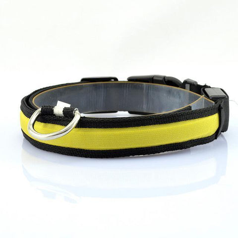 Collars and Leashes Safety LED Collar Yellow / S