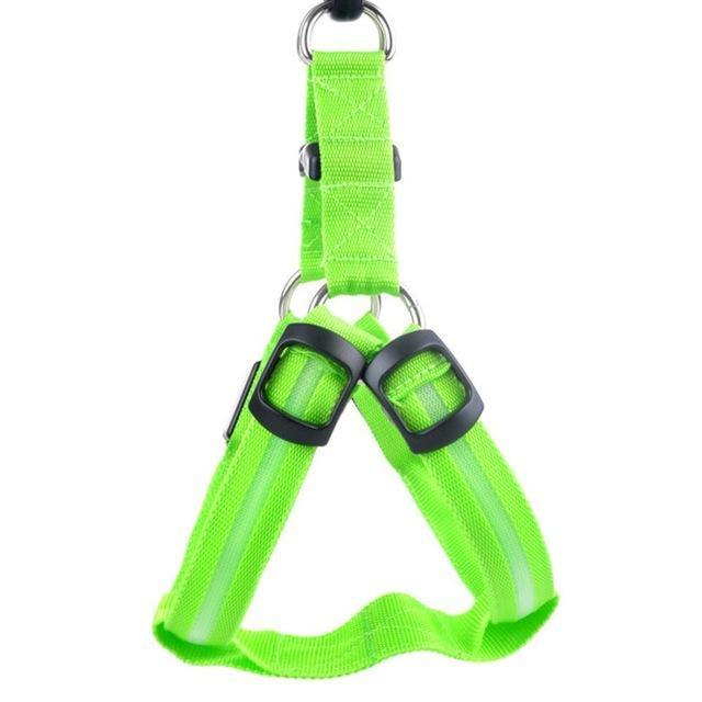 Collars and Leashes Safety Pet Collar with 3 Glowing Modes & 3 Reflective Strings, Adjustable Soft Nylon Webbing Green / XS