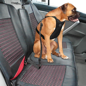 Safety Dog Safety Car Harness Seat Belt - Premium Black / S