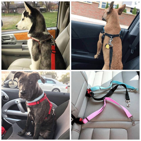 Safety Dog Safety Car Seat Belt Black Seat Belt