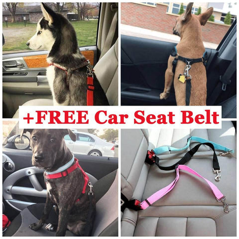 Safety Dog Safety Car Seat Belt FREE+Sh (Mix Color)
