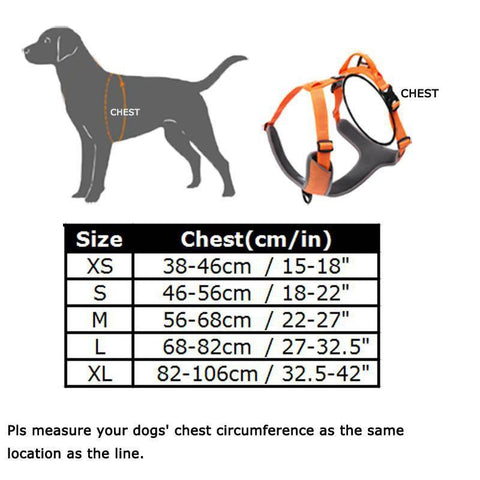 Image of Safety Reflective Dog Vest for Walks, Seat Belts, Adjustable Harness, and Sizes Black / XS chest 38-46cm