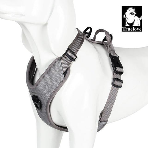 Image of Safety Reflective Dog Vest for Walks, Seat Belts, Adjustable Harness, and Sizes Gray / XS chest 38-46cm