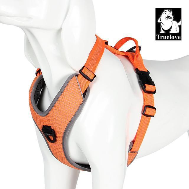 Safety Reflective Dog Vest for Walks, Seat Belts, Adjustable Harness, and Sizes Orange / XS chest 38-46cm