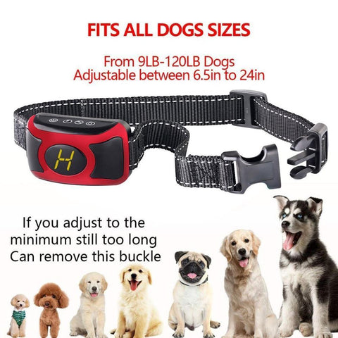 Image of Training and behavior Digital Flashing Light Collar With Smart Chip Black