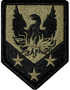 110th Maneuver Enhancement Brigade OCP Patch - Scorpion W2