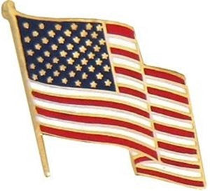 Waving U.S. Flag Pin