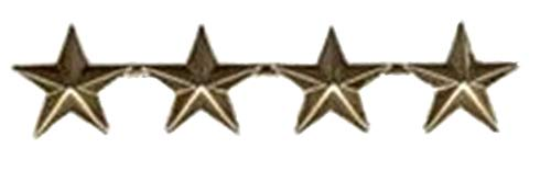 4 Star General Gold Large Pin