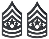 U.S. Army Black Metal Pin On Rank - Pair - All Enlisted Ranks